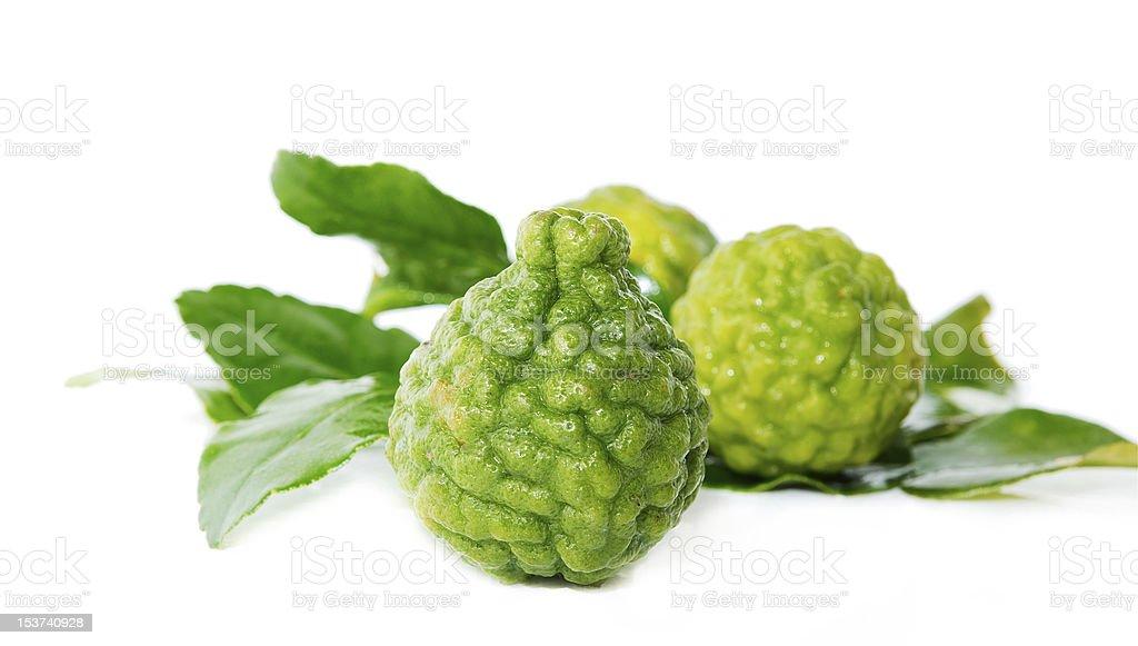 Fresh green lime. Kafir stock photo