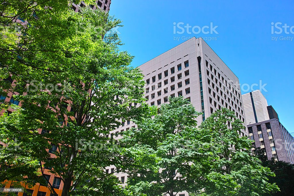 Fresh green of the Tokyo business district stock photo
