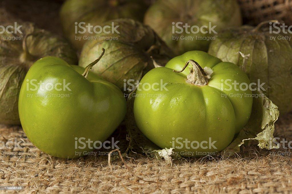 Fresh Green Organic Tomatillo royalty-free stock photo