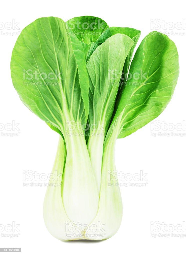 fresh green pak choi on a white background stock photo