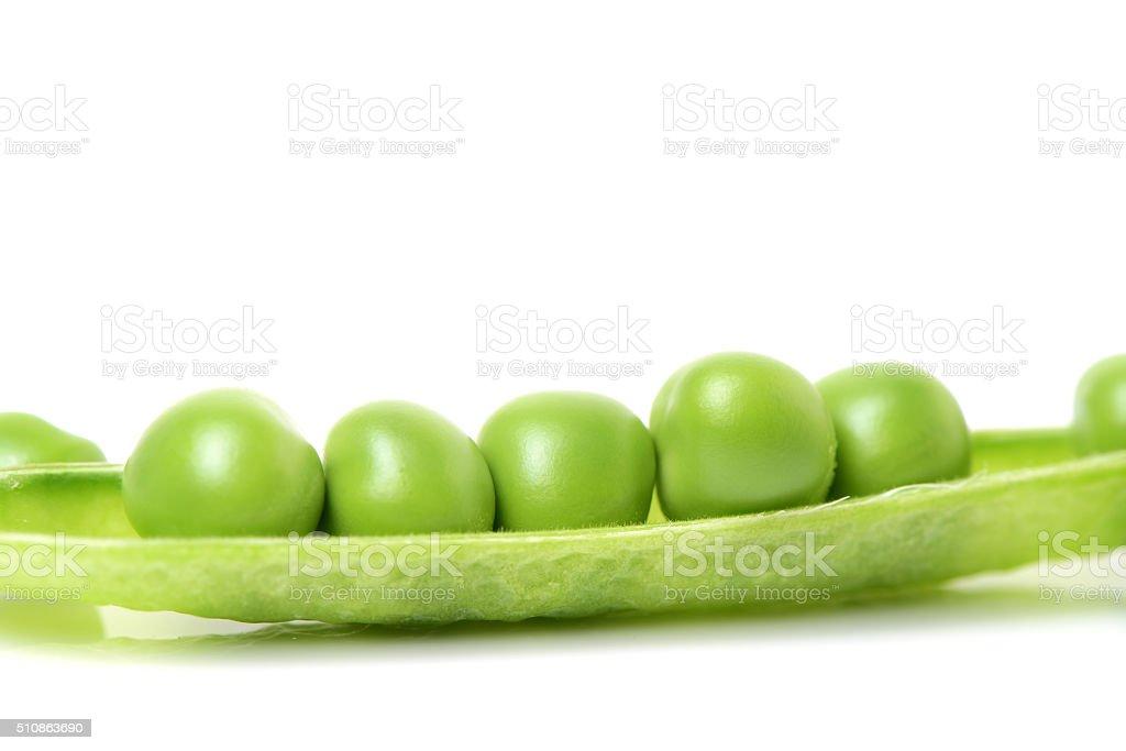 fresh green pea in the pod stock photo