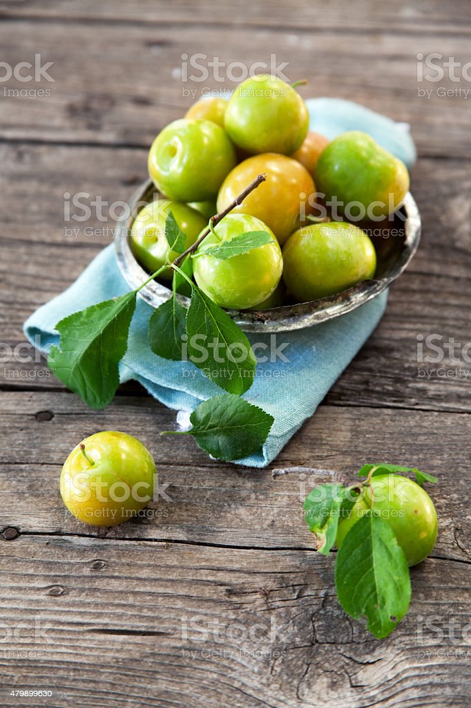 Fresh green plums stock photo