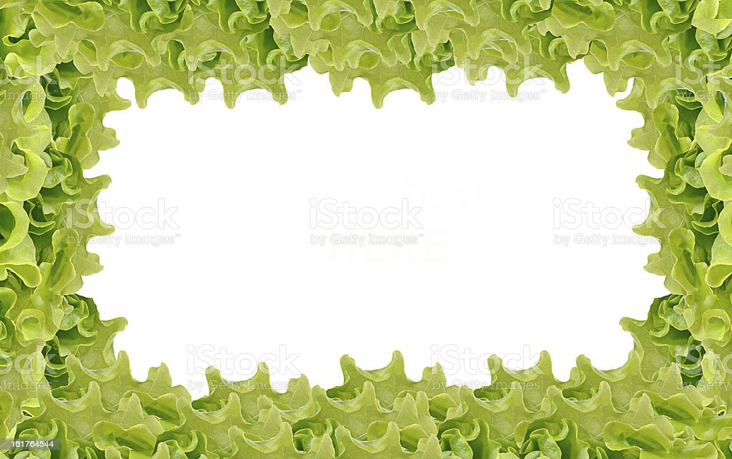 Fresh Green Salad frame royalty-free stock photo