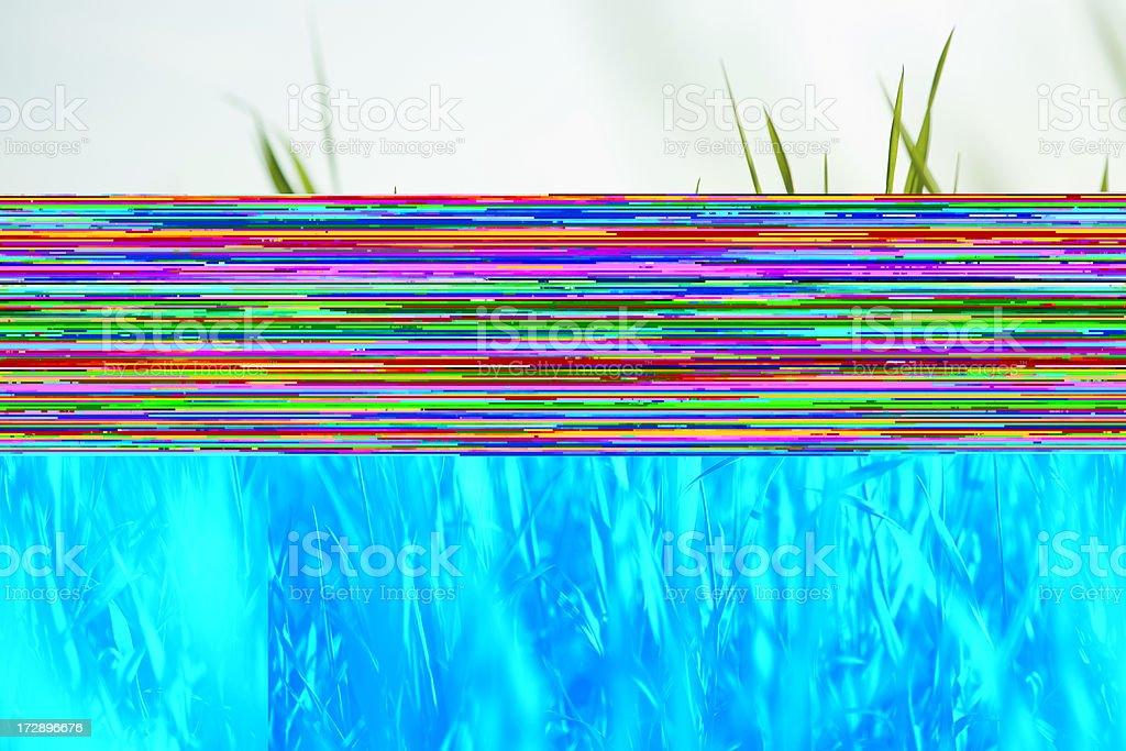 fresh green spring grass royalty-free stock photo