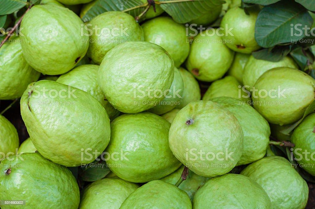 Fresh guava fruit. Green background. stock photo