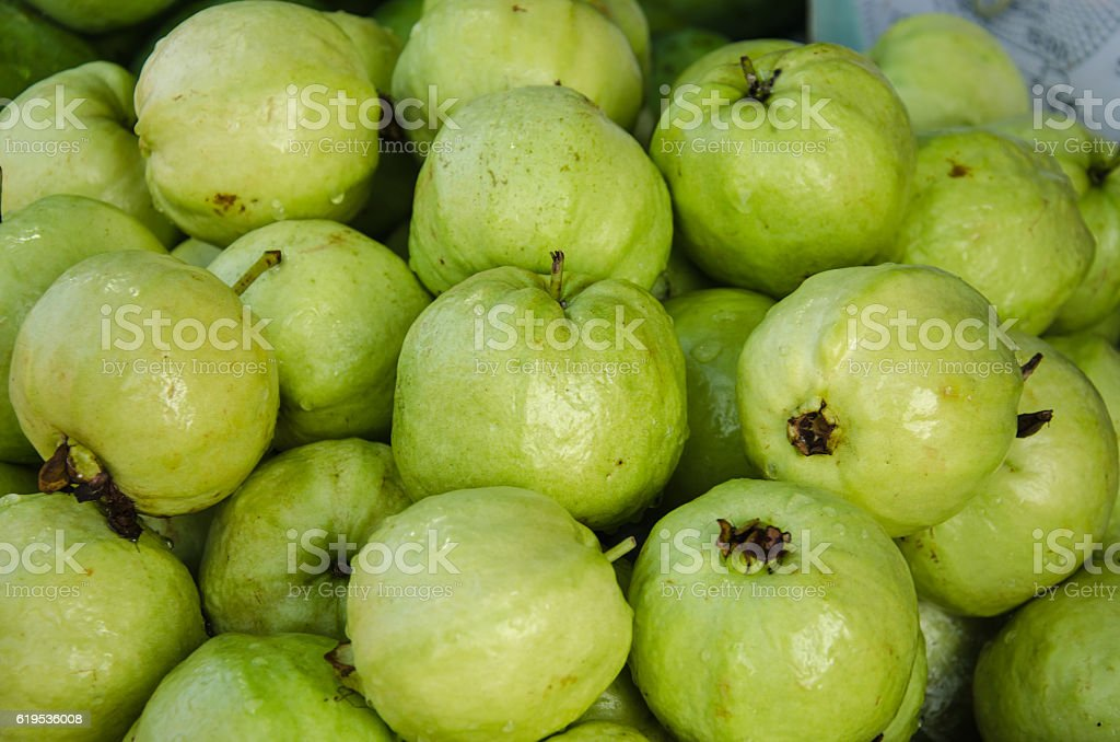 Fresh guava fruit stock photo