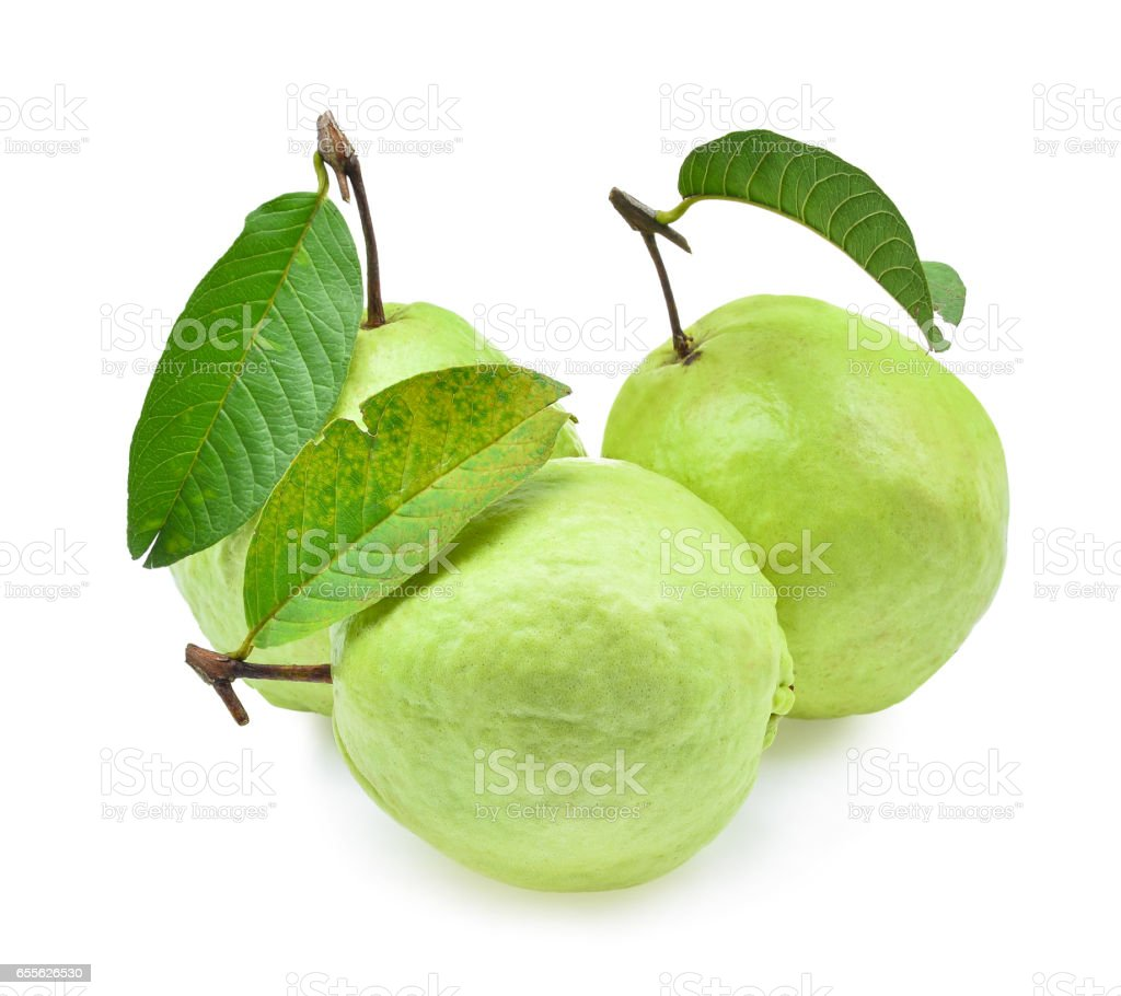 fresh guava fruit solated on white background stock photo
