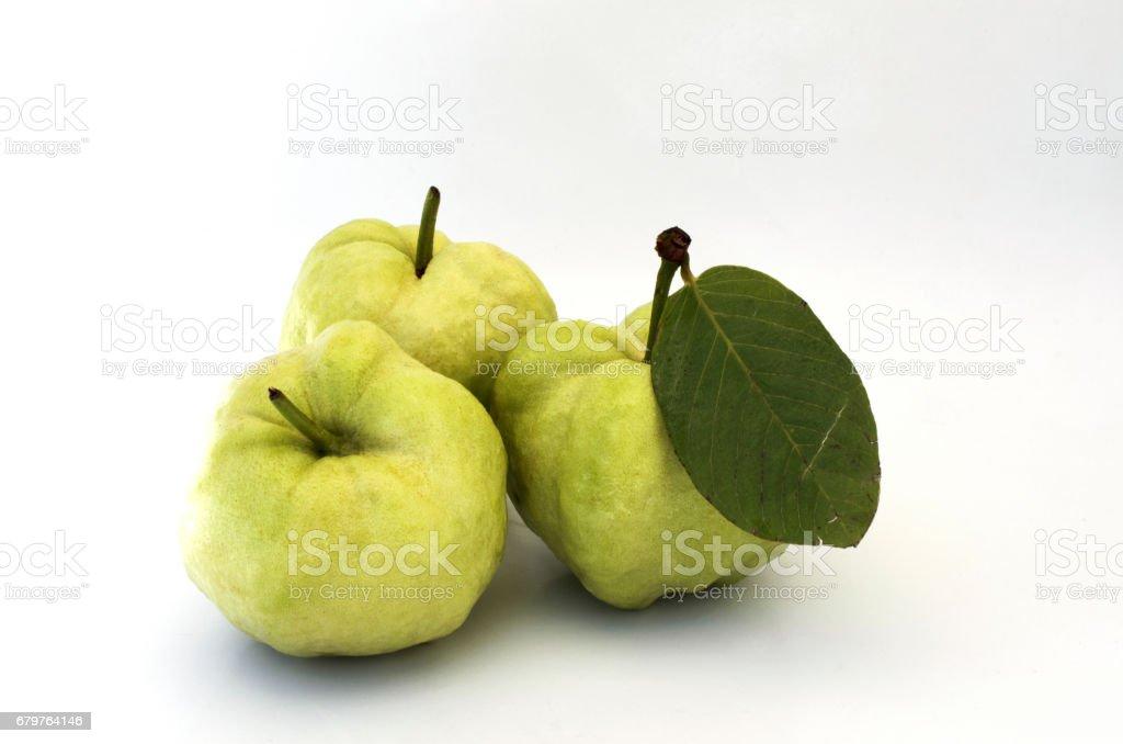 Fresh guava fruits on white background stock photo