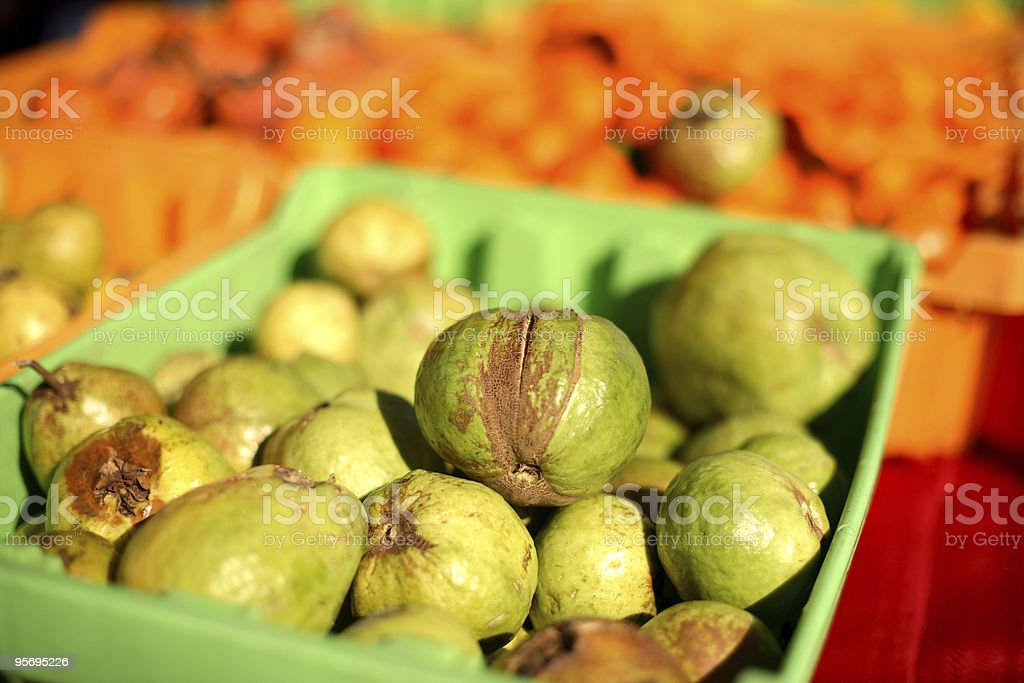 Fresh Guava stock photo