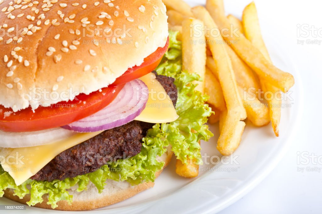 Fresh hamburger with fries on white plate royalty-free stock photo
