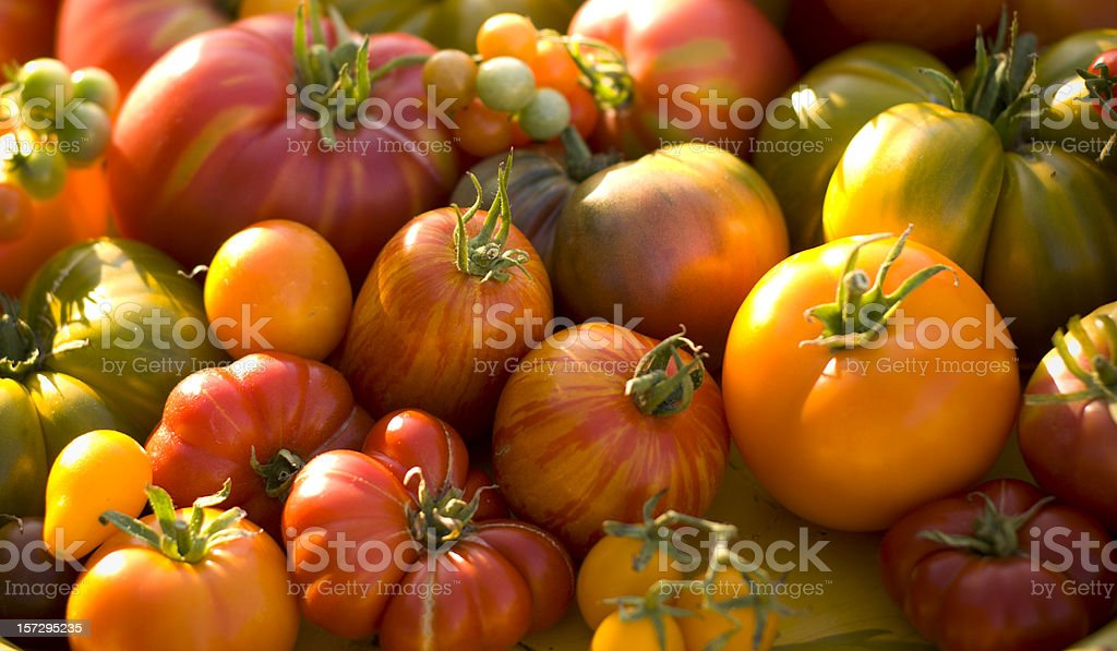 Fresh Heirloom Tomatoes Homegrown Vegetables Background, Farmer's Market Organic Produce stock photo