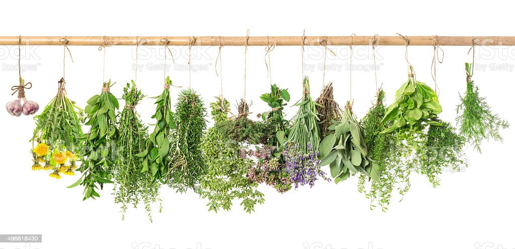 Fresh herbs. Basil, rosemary, thyme, mint, dill, sage, garlic stock photo