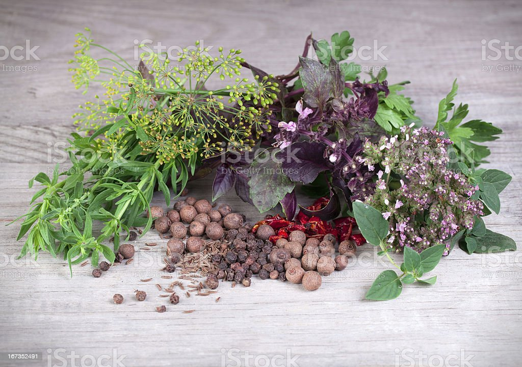 Fresh herbs collection royalty-free stock photo