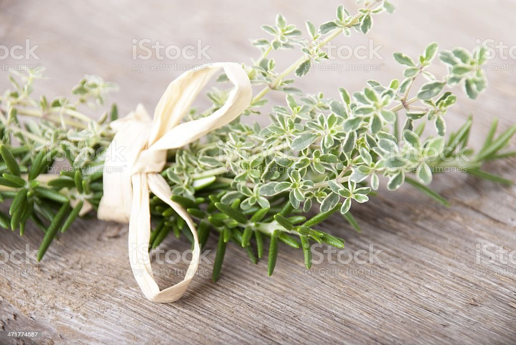 fresh herbs in a bouquet royalty-free stock photo