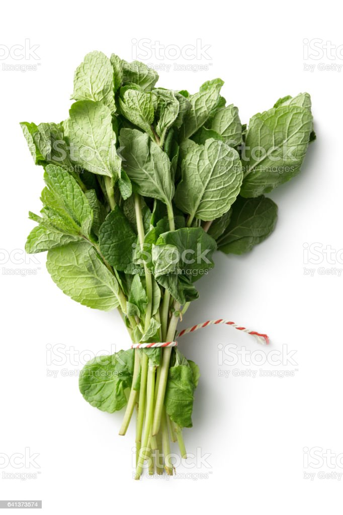 Fresh Herbs: Mint Isolated on White Background stock photo