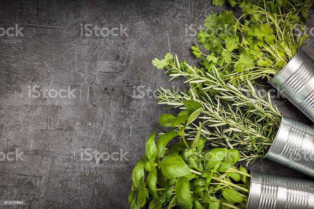 Fresh herbs on grey background stock photo