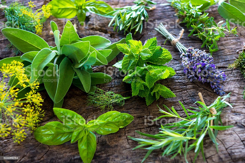 Fresh herbs on wooden background stock photo