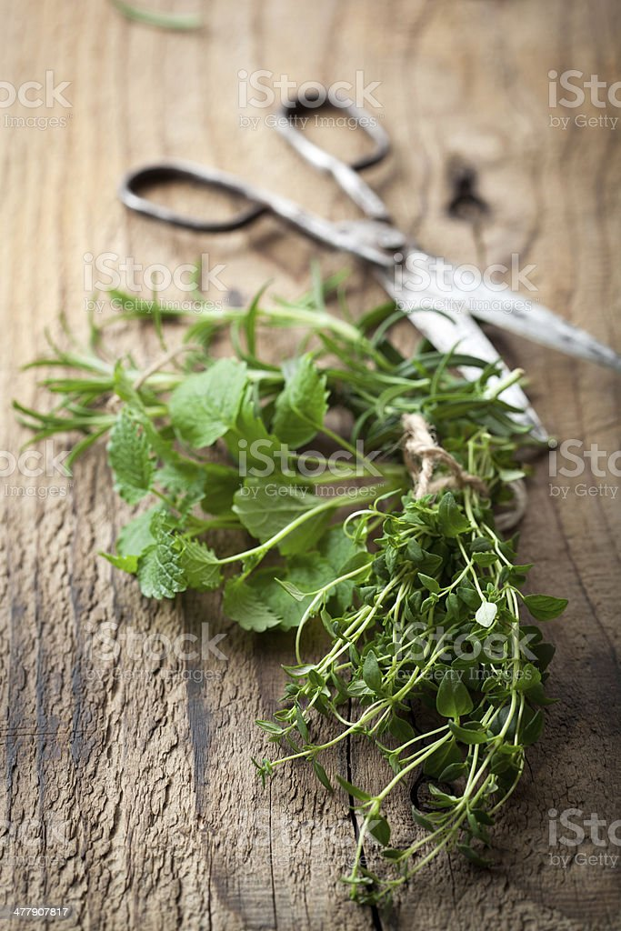 fresh herbs on wooden table royalty-free stock photo