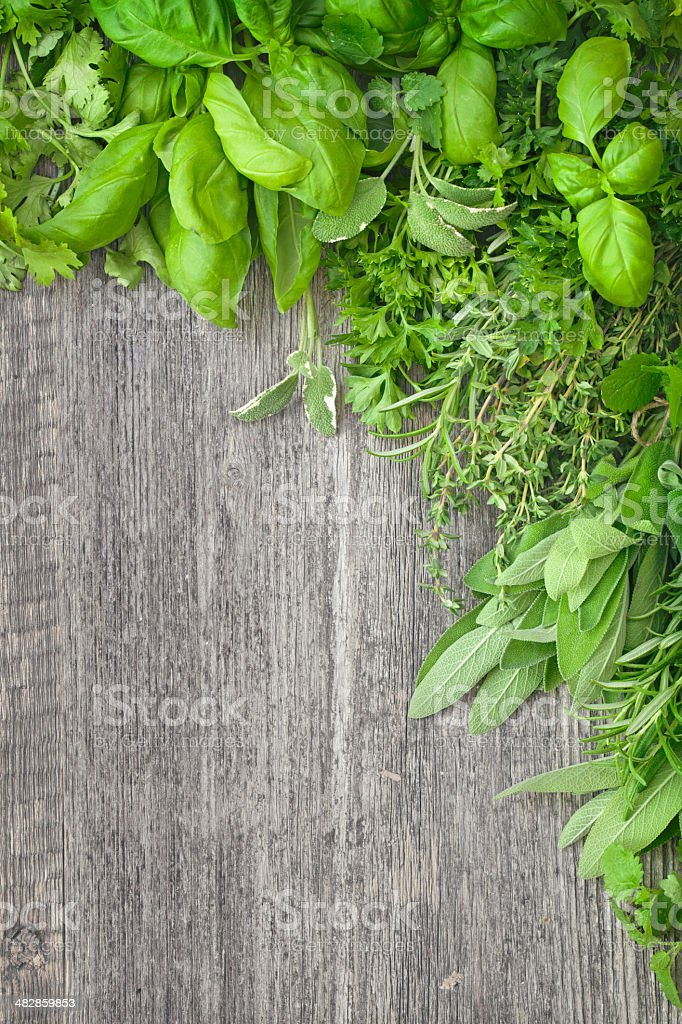 Fresh herbs over grey wooden stock photo