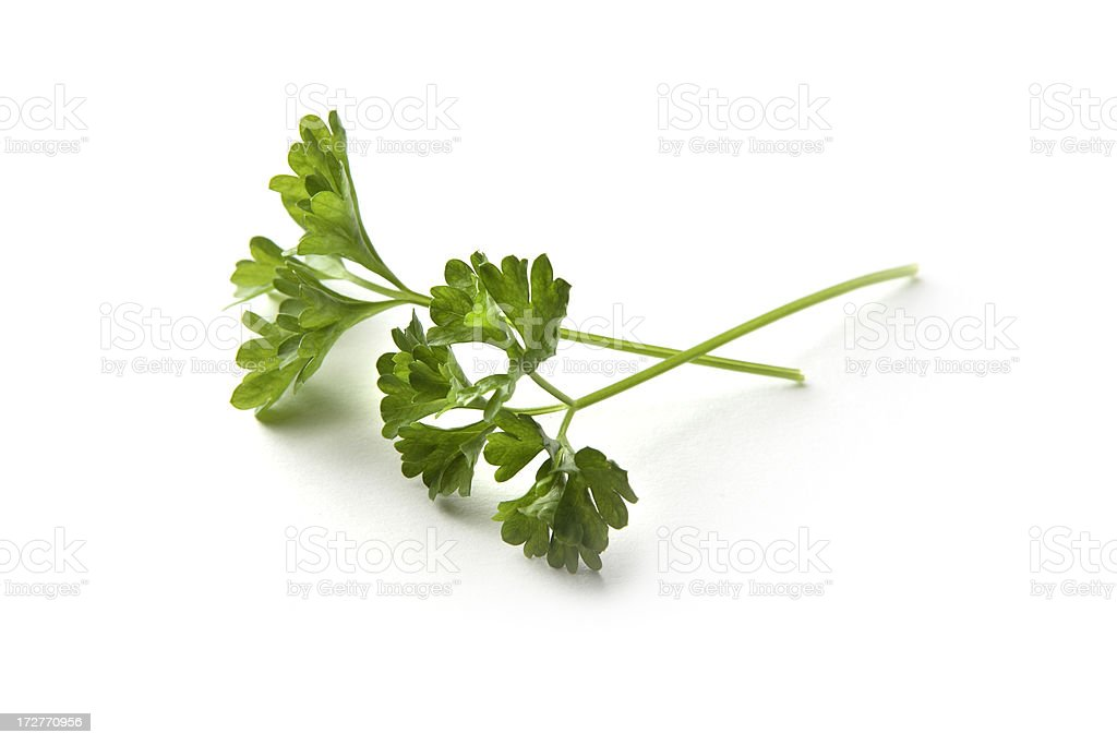Fresh Herbs: Parsley stock photo
