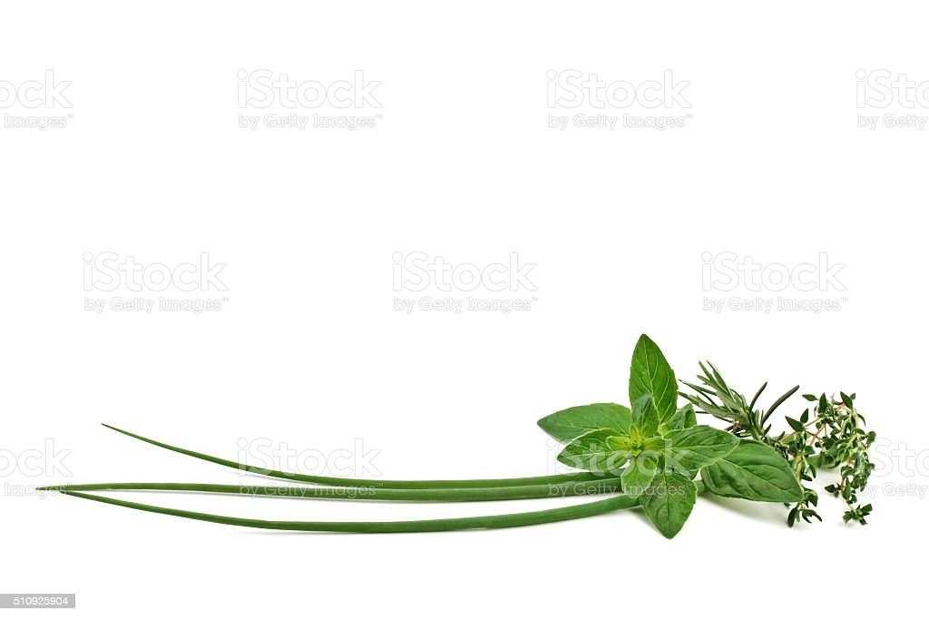 Fresh herbs. stock photo