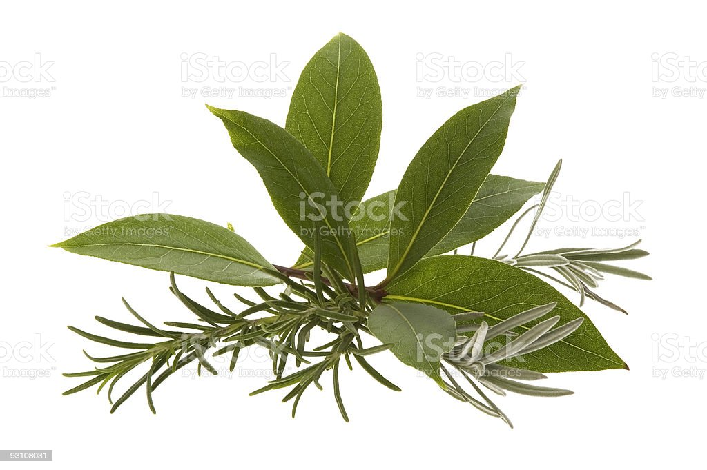 fresh herbs. rosemary, lavender and bay leaf royalty-free stock photo