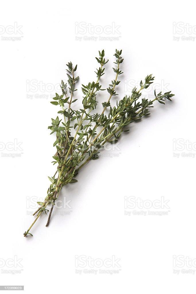Fresh Herbs: Thyme royalty-free stock photo