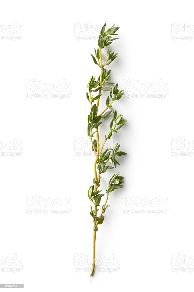 Fresh Herbs: Thyme stock photo