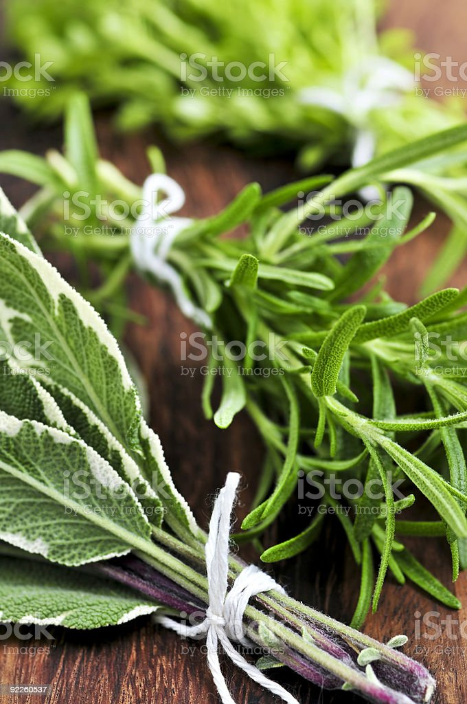 Fresh herbs tied in bundles with twine royalty-free stock photo