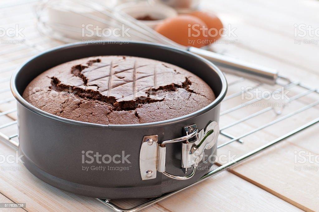 Fresh home made sponge cake stock photo