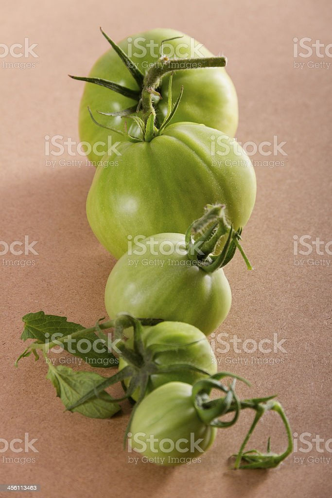 Fresh homegrown green tomatoes in line stock photo
