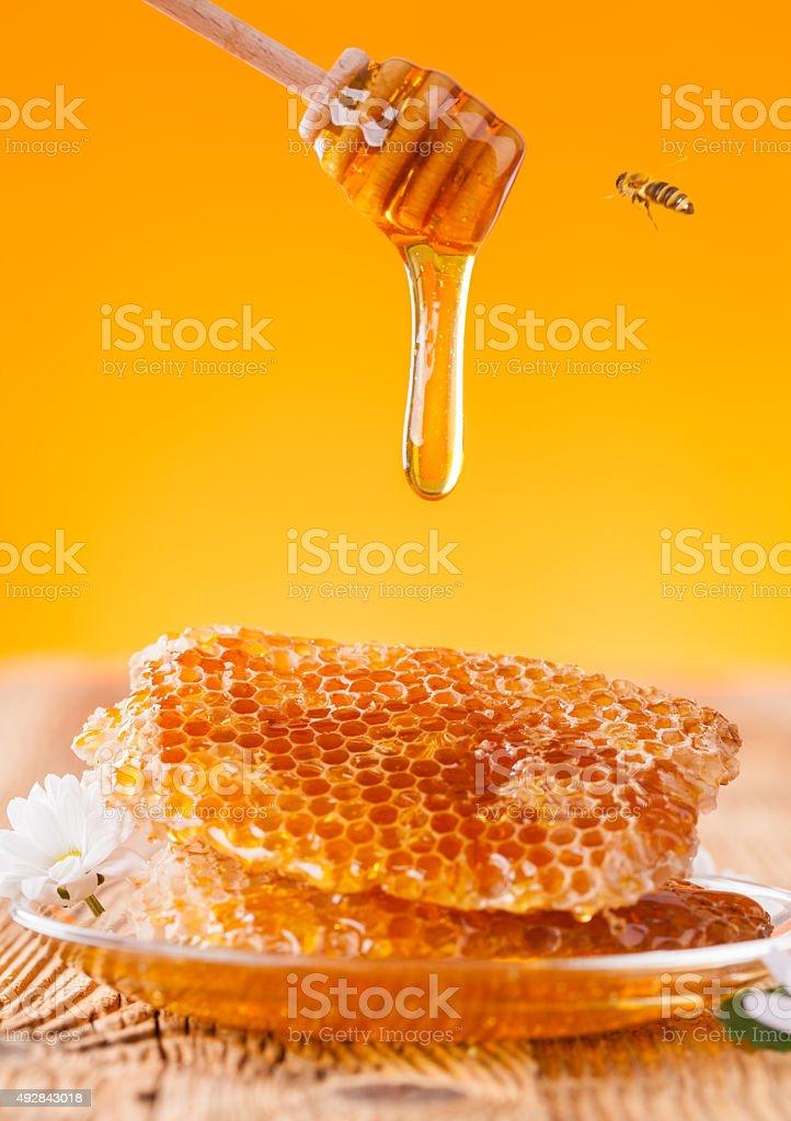 Fresh honey with dipper stock photo