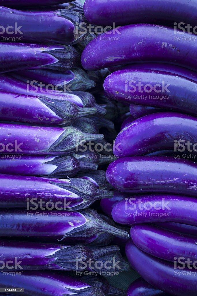Fresh Japanese Eggplant stock photo