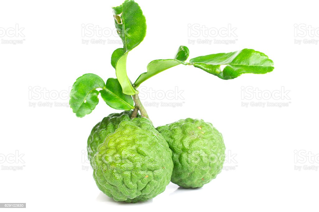 Fresh kaffir lime and leaves stock photo