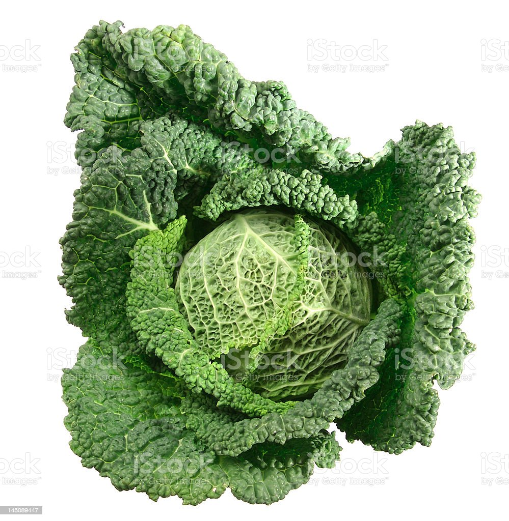Fresh kale royalty-free stock photo
