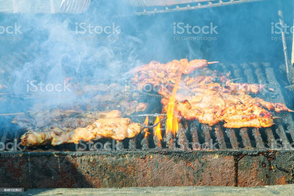 fresh kebab prepares on the fire outdoors stock photo