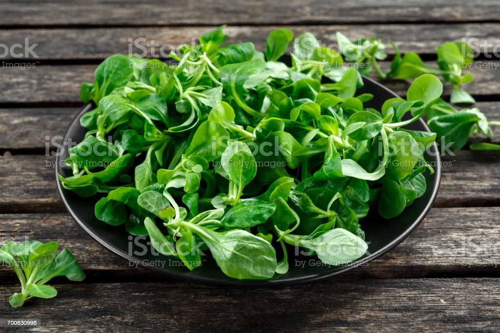 Fresh lamb lettuce corn salad in a black plate on wooden rustic table. stock photo