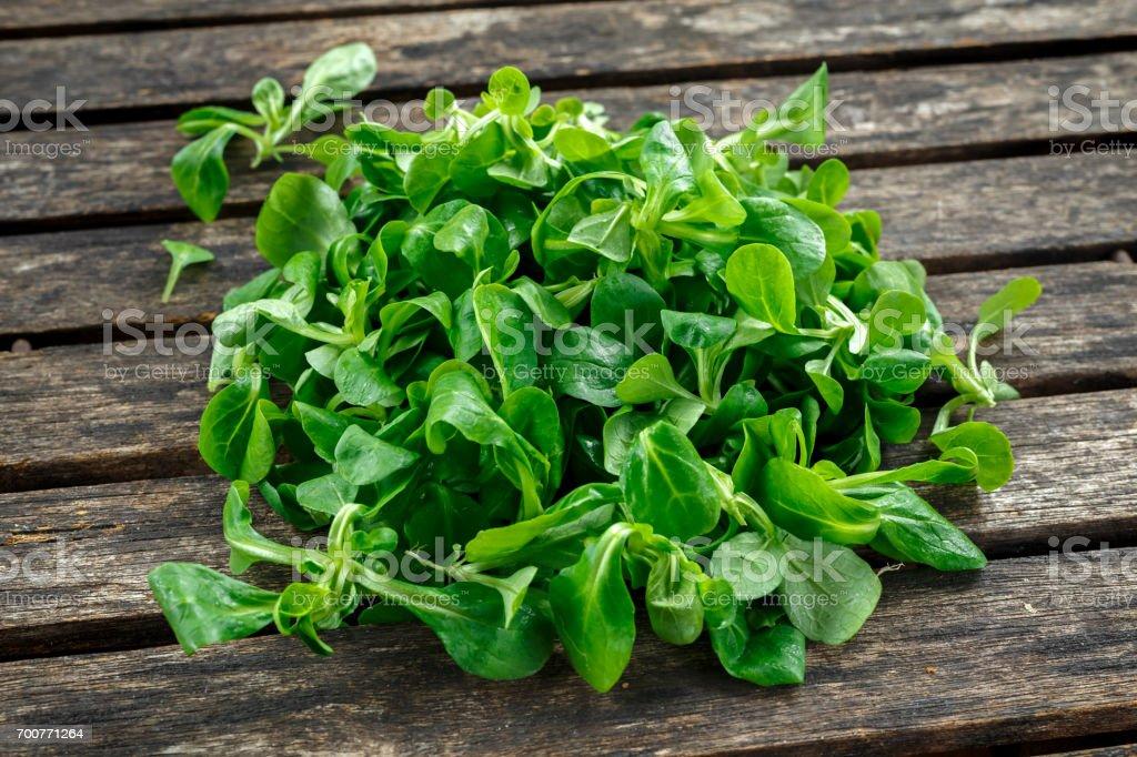 Fresh lamb lettuce corn salad on rustic wooden table stock photo