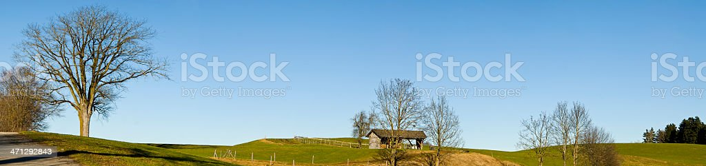 Fresh Landscape panorama in spring with lonely tree stock photo