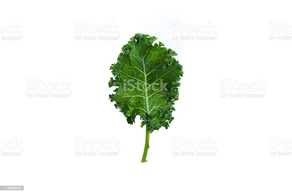 A fresh leaf of green kale on white background royalty-free stock photo