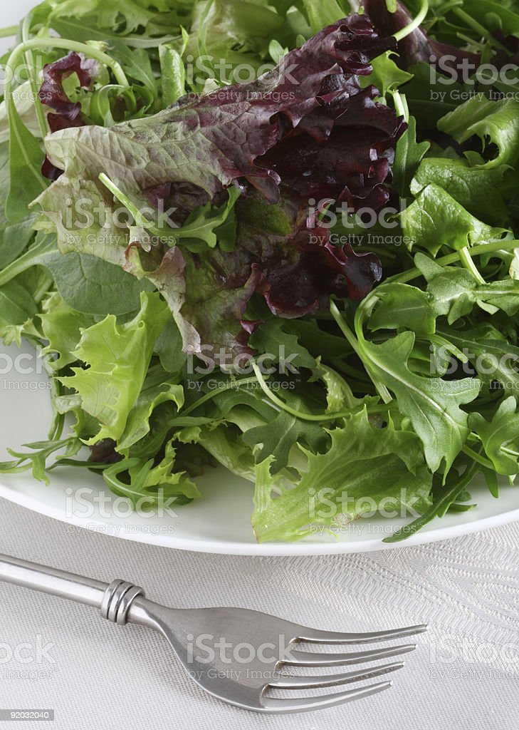 fresh leaf salad with fork on gray  tea-cloth stock photo