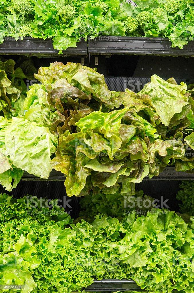 Fresh leafy vegetables stock photo