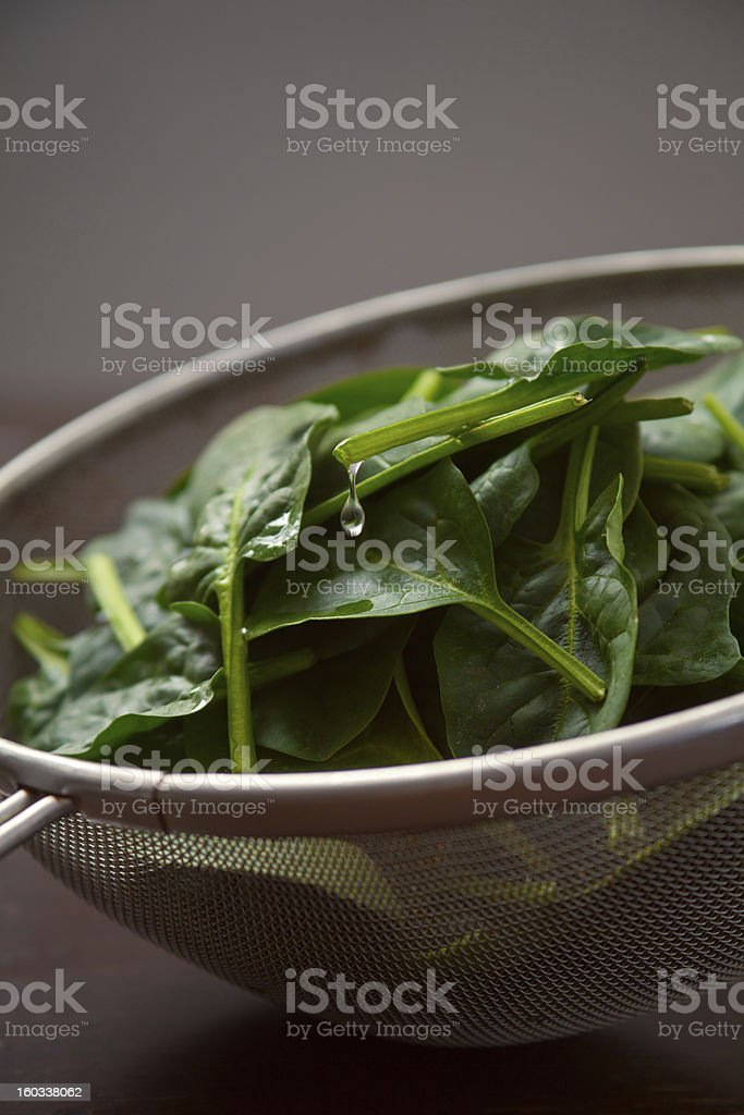 Fresh leaves of spinach in a strainer royalty-free stock photo