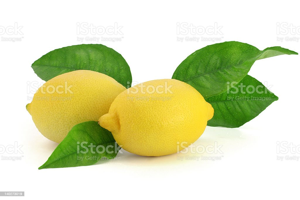 Fresh lemons with leaves royalty-free stock photo