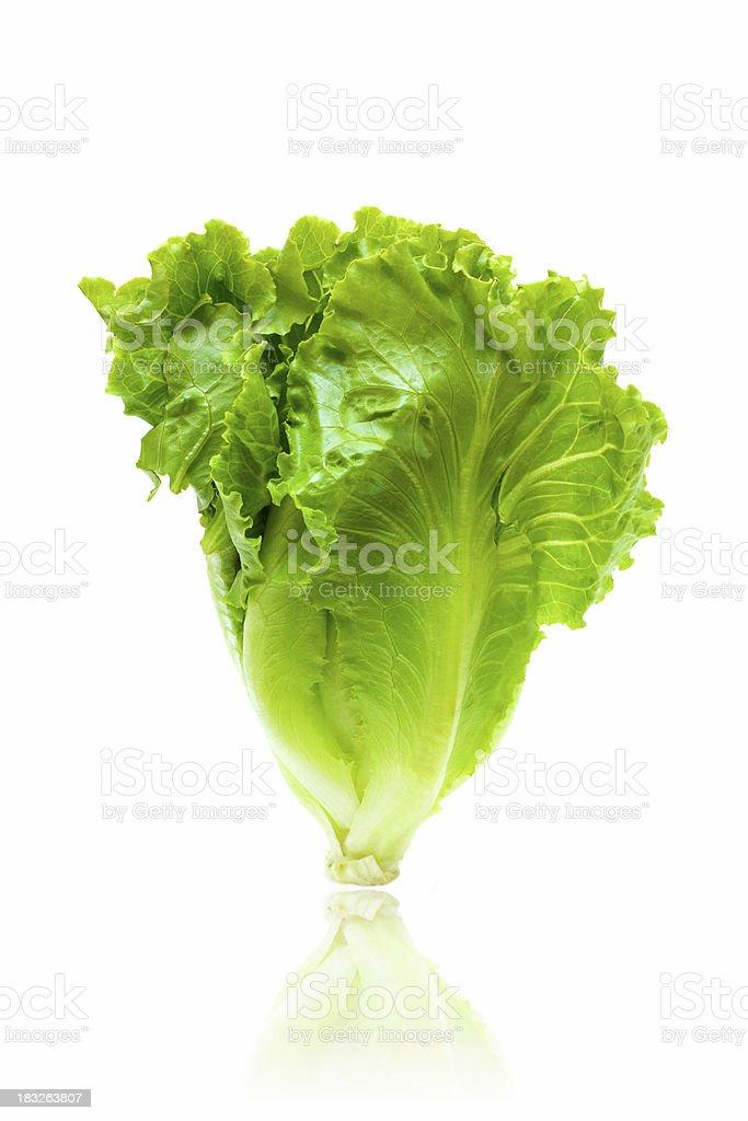 Fresh lettuce isolated on white background stock photo