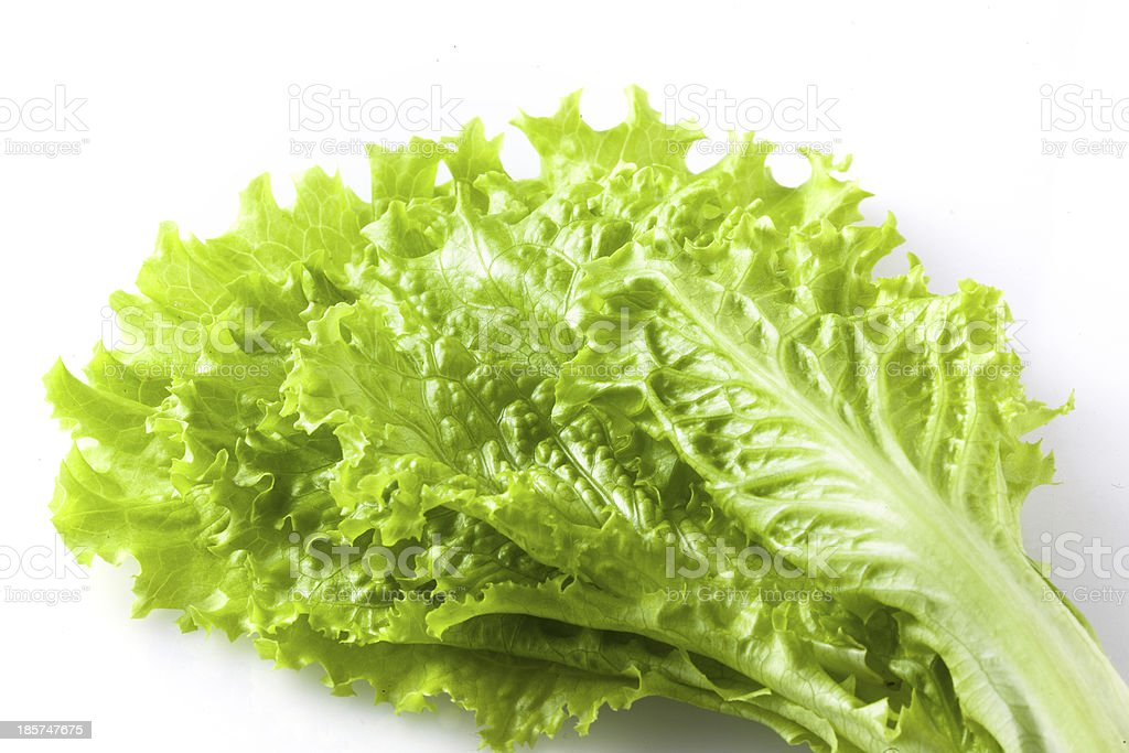 Fresh lettuce isolated on white stock photo