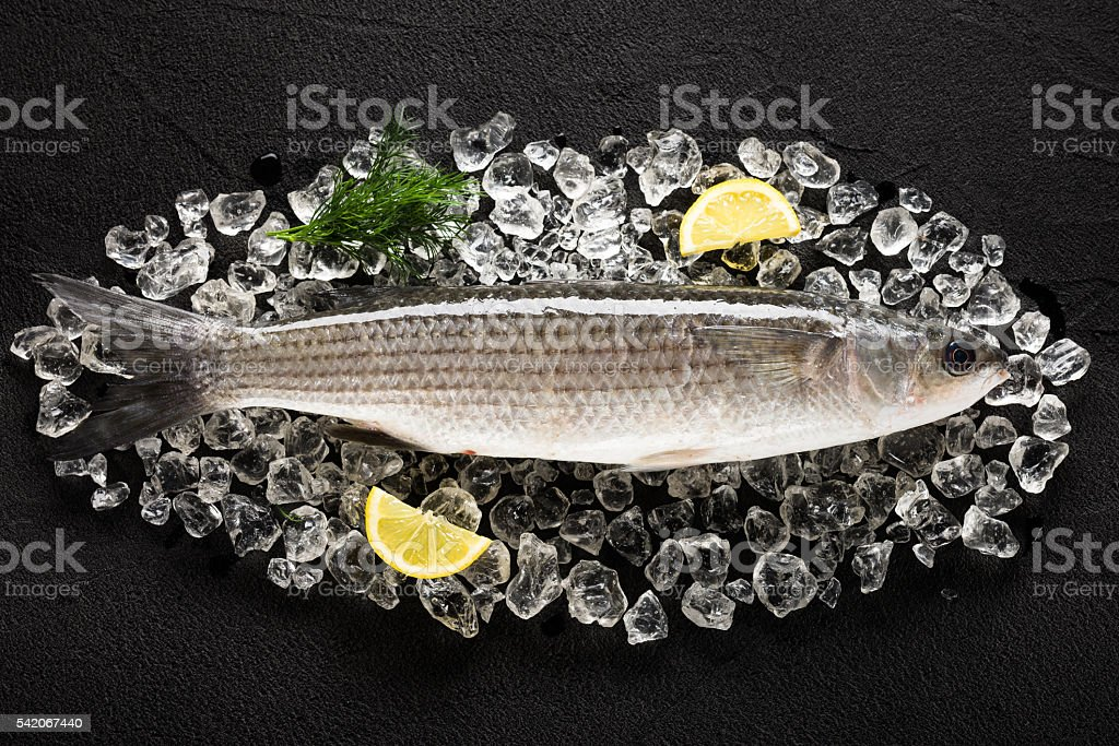 Fresh liza fish on ice on a black stone table stock photo
