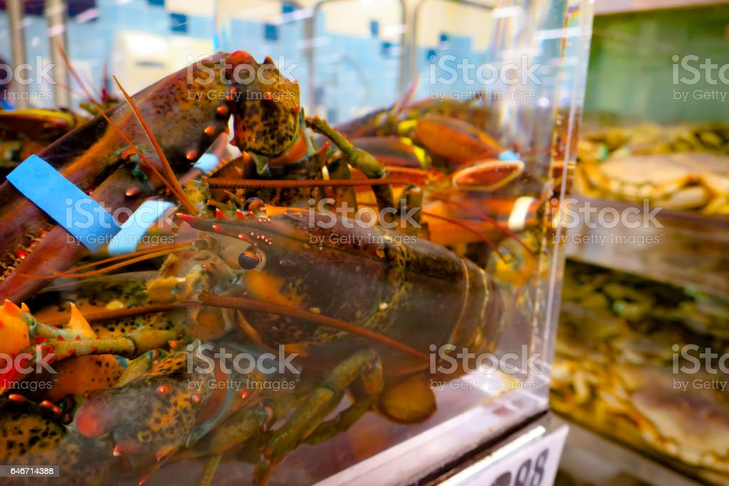 Fresh lobster stock photo