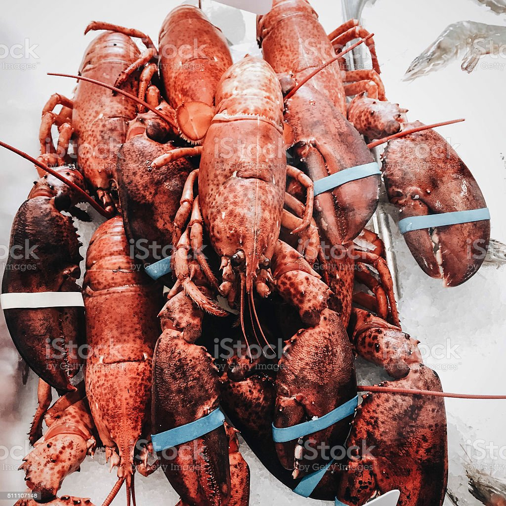 Fresh lobsters in a fishmarket stock photo