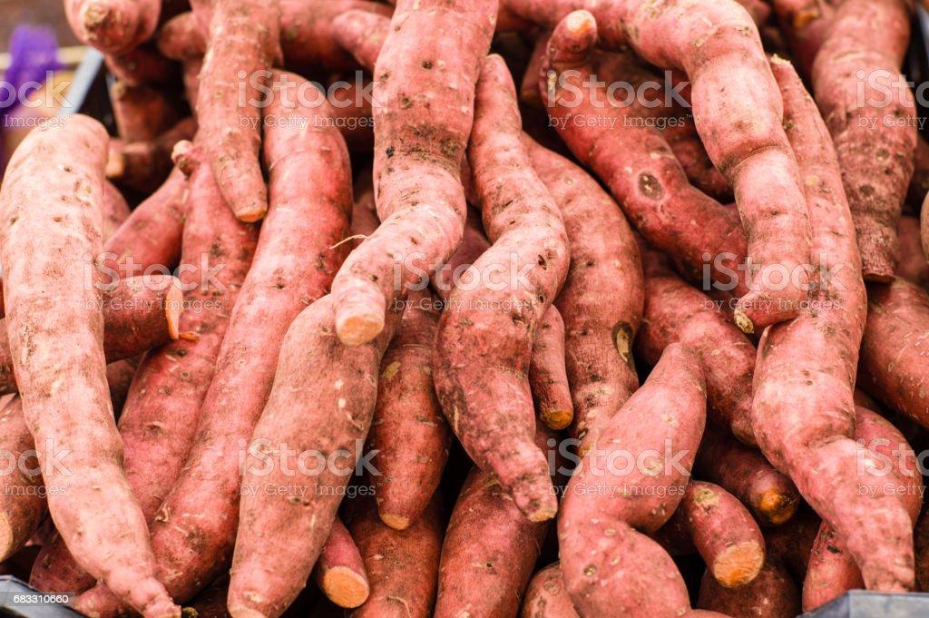 Fresh local sweet potatoes at the market stock photo